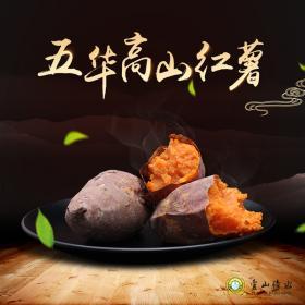 五华高山红薯烤炉套餐