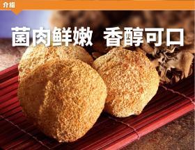贵州黔味飘猴头菇180g