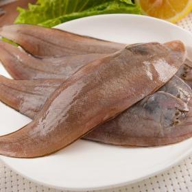 几内亚舌鳎(400g以上)(满299顺丰包邮)